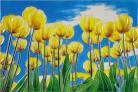 Yellow Tulips 8x12