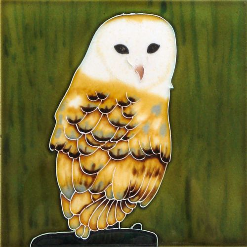 Barn Owl 8x8