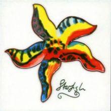 Starfish 6x6