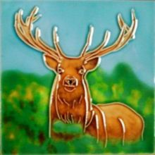 Red Deer Stag 4x4