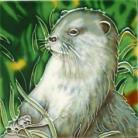 Otter 4x4