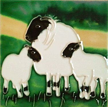 Sheep 4x4