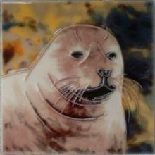 Seal 4x4