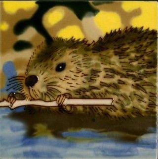 Beaver 4x4