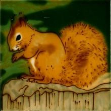 Red Squirrel 4x4