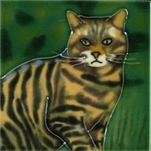 Scottish Wildcat 4x4